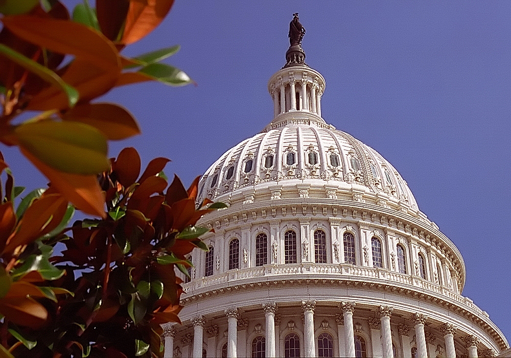 Capitol Dome, Washington D.C.