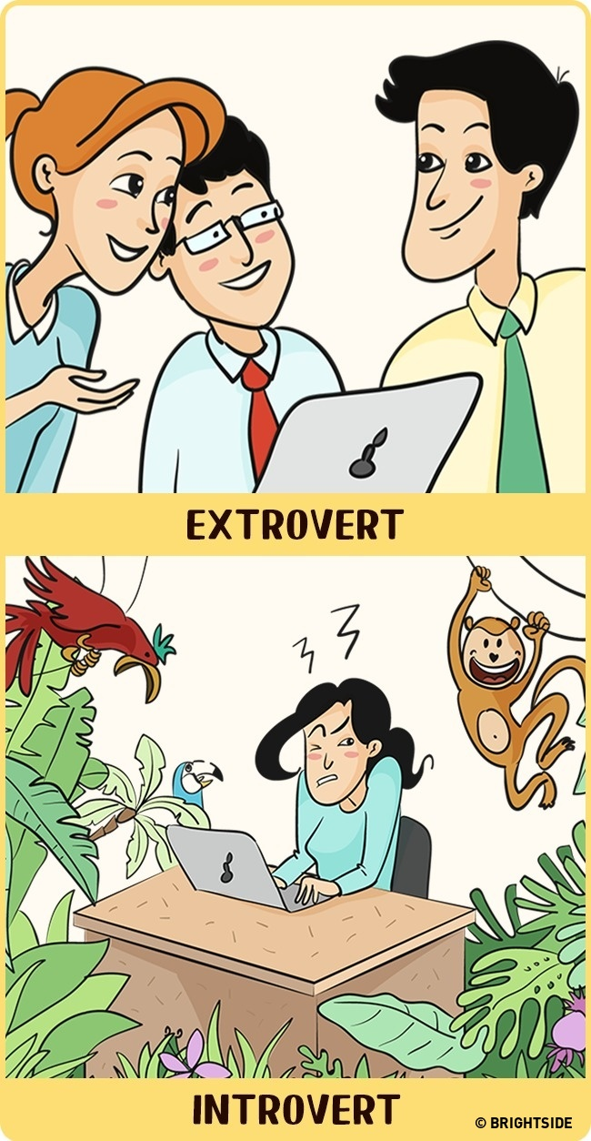 Office for introverts and extroverts