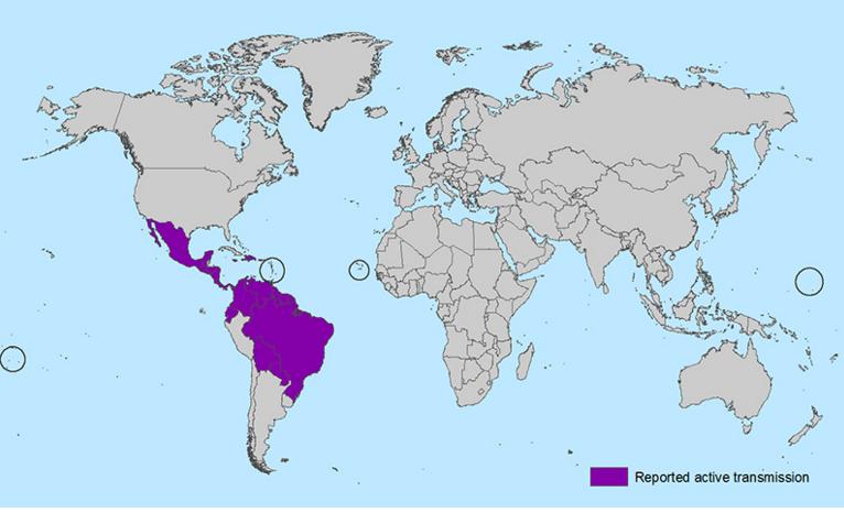 Montana has first case of Zika virus