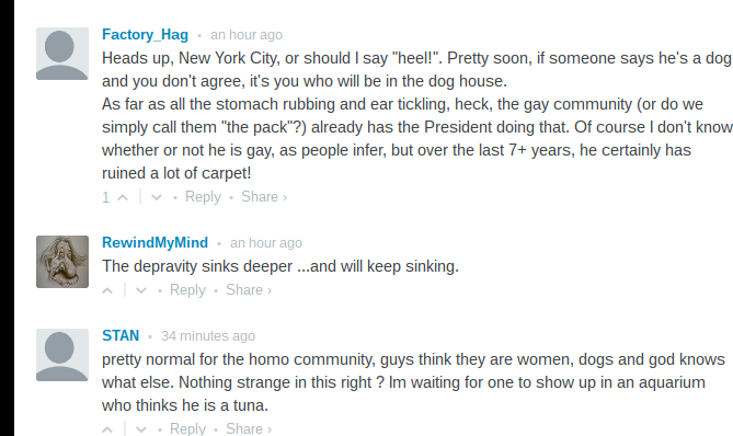 Breitbart comments