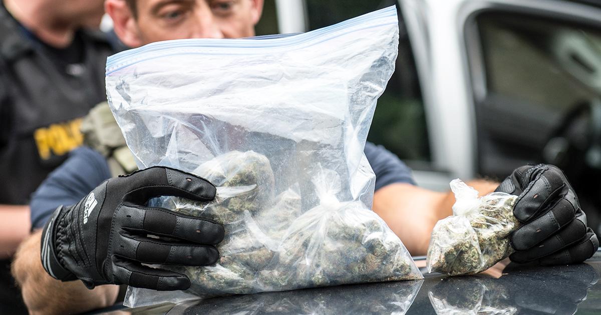 police-searching-through-bag-of-marijuana