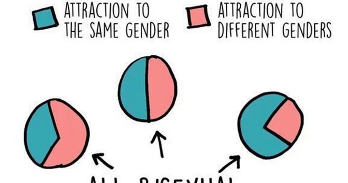 Chart Debunks A Myth About Bisexuality - Attn-9925