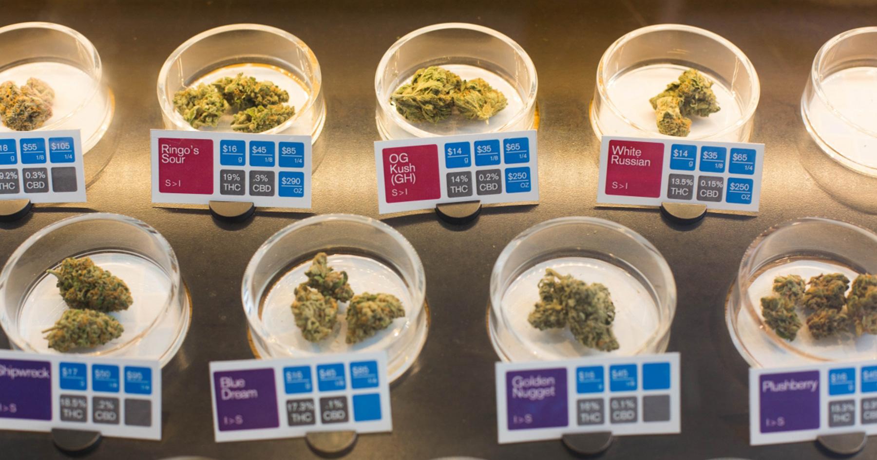 samples-of-medical-marijuana-strains