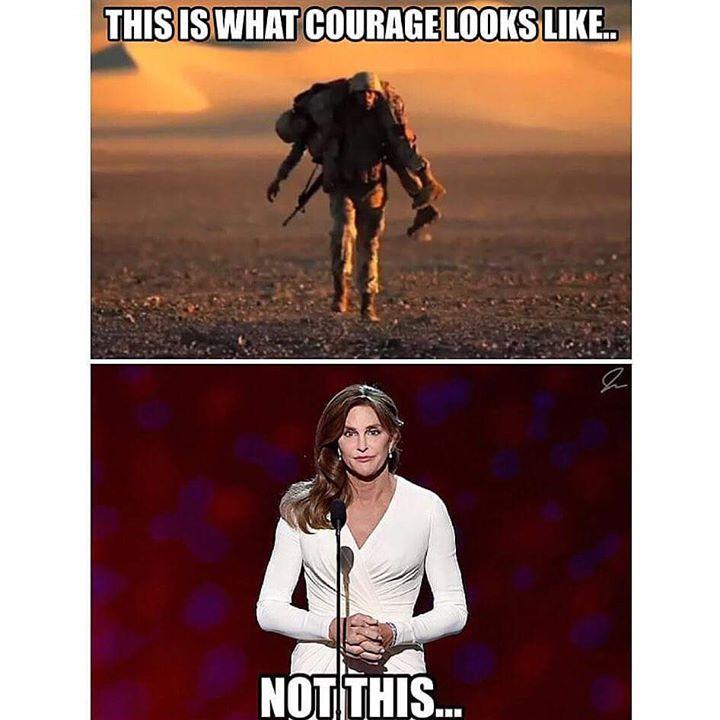 Anti-Caitlyn Jenner meme
