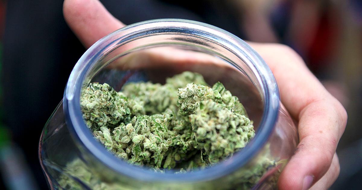 nevada-marijuana