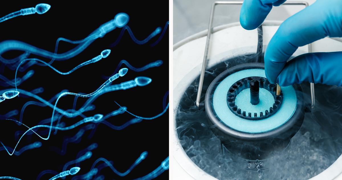 Pill men fertility male levels sperm hormone trials counts expect sex favorite movies