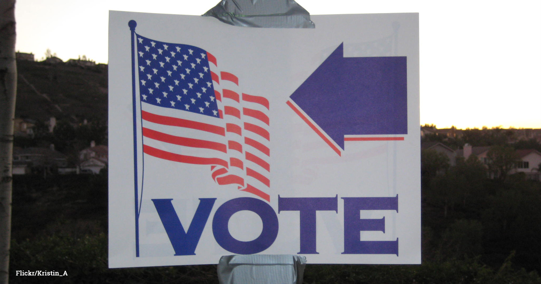 Vote This Way