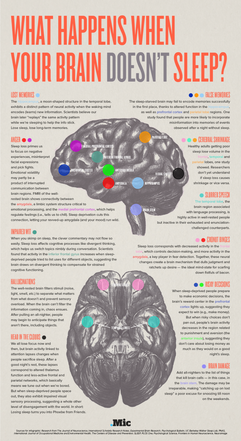 what happens when your brain doesn't sleep graphic